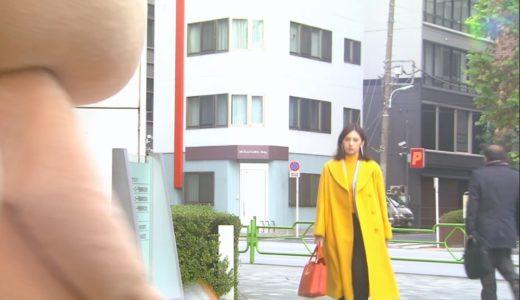【家売るオンナの逆襲・2話ドラマ衣装】北川景子のパンプスやバッグは?
